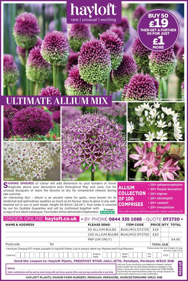 DT2720 Ultimate Alliums