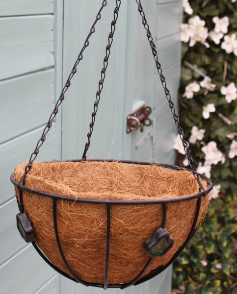 Hanging Basket with Liner