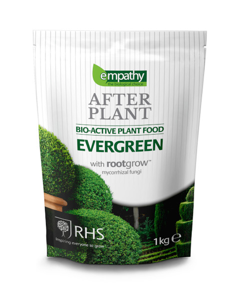 After Plant Evergreen Food