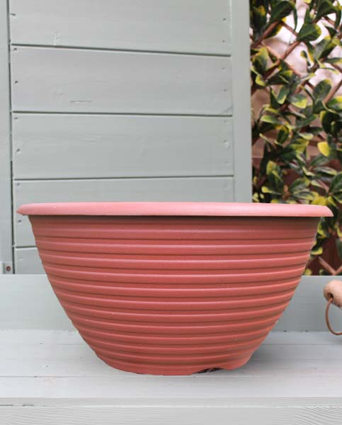 Striation Bowl