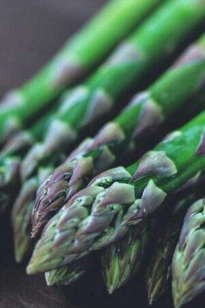Asparagus Mixed Collection