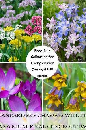 FREE Spring and Early Summer Flowering Bulbs