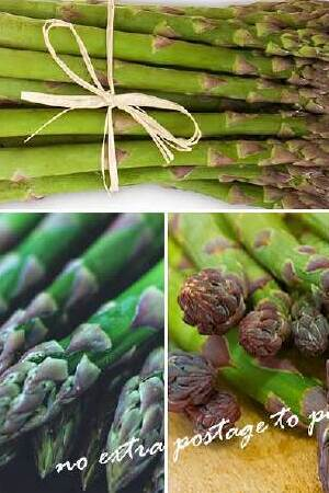 Full-Season Asparagus Collection