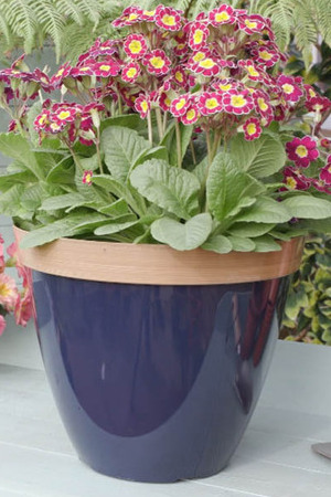 Provence Planter in Blue