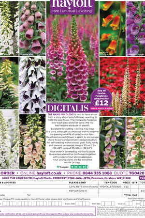 Digitalis Collection