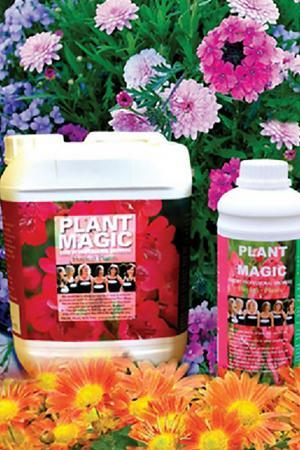 Plant Magic Fertiliser
