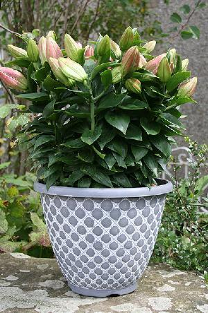 11 inch Bell Quilt Planter Grey and White