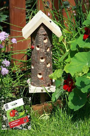Ladybird Tower & Food Attractant
